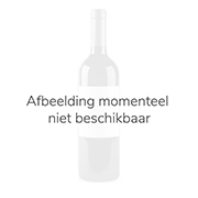 Viu Manent - Secret Syrah - 0,75 - 2016